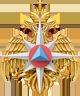 Министерство по чрезвычайным ситуациям Российской Федерации